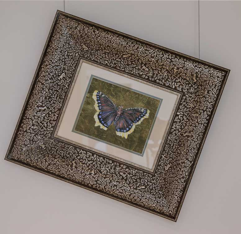Garden Jewel Butterfly drawing by Grazyna Tonkiel