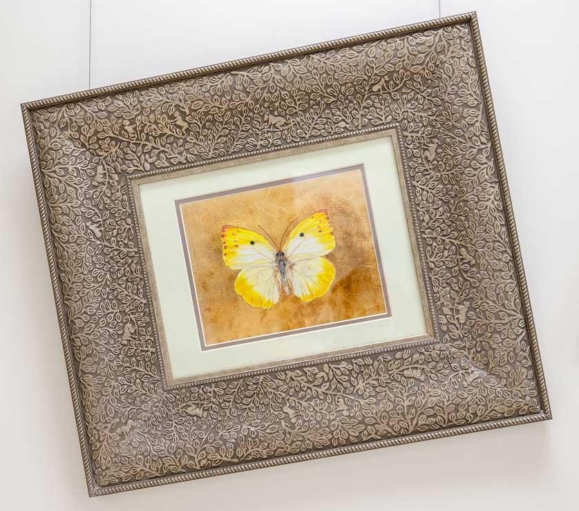 Catopsilia Thauruma Butterfly drawing by Grazyna Tonkiel