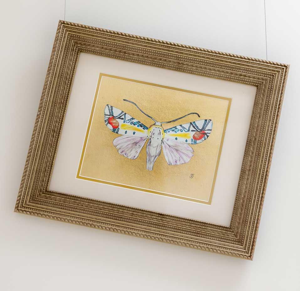 Nocturne Moth drawing by Grazyna Tonkiel