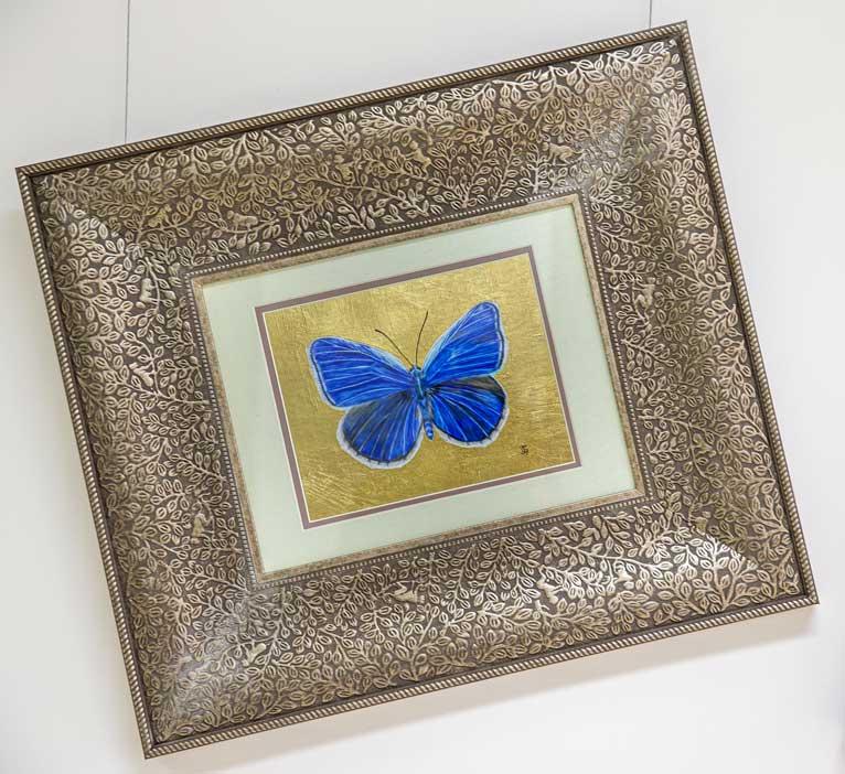 True Blue butterfly drawing by Grazyna Tonkiel
