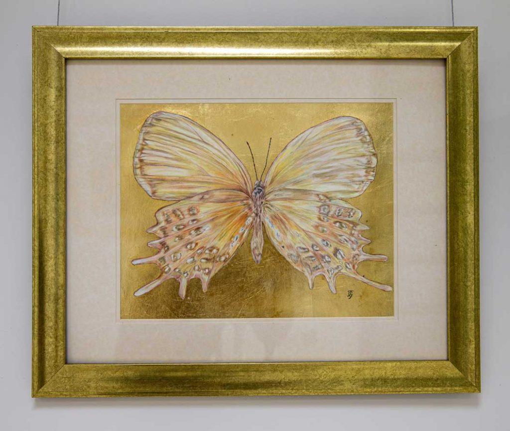 Favorite Butterfly drawing by Grazyna Tonkiel