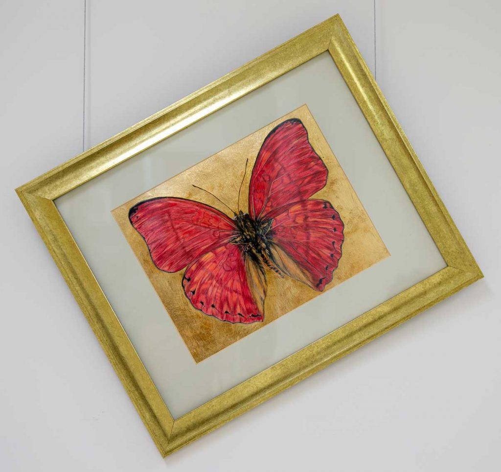 Wanderer Butterfly drawing by Grazyna Tonkiel