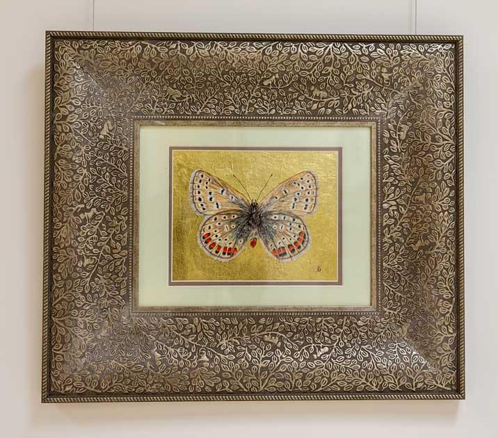 Blue? Butterfly drawing by Grazyna Tonkiel