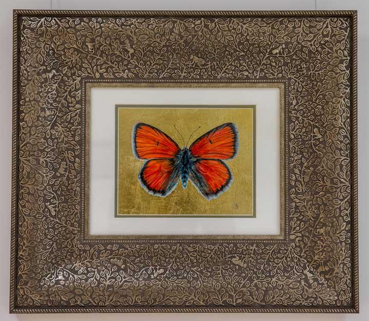 Copper Butterfly drawing by Grazyna Tonkiel