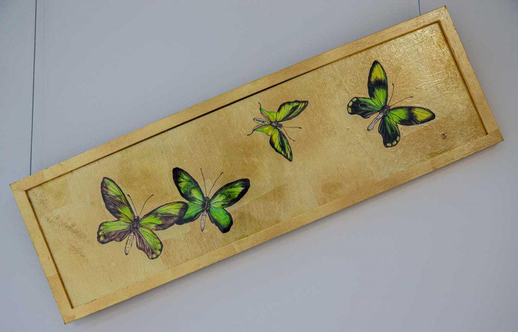 Flight4 Butterfly drawing by Grazyna Tonkiel