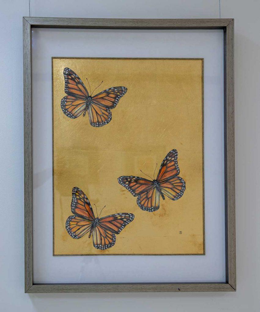 Triumvirate Butterfly drawing by Grazyna Tonkiel