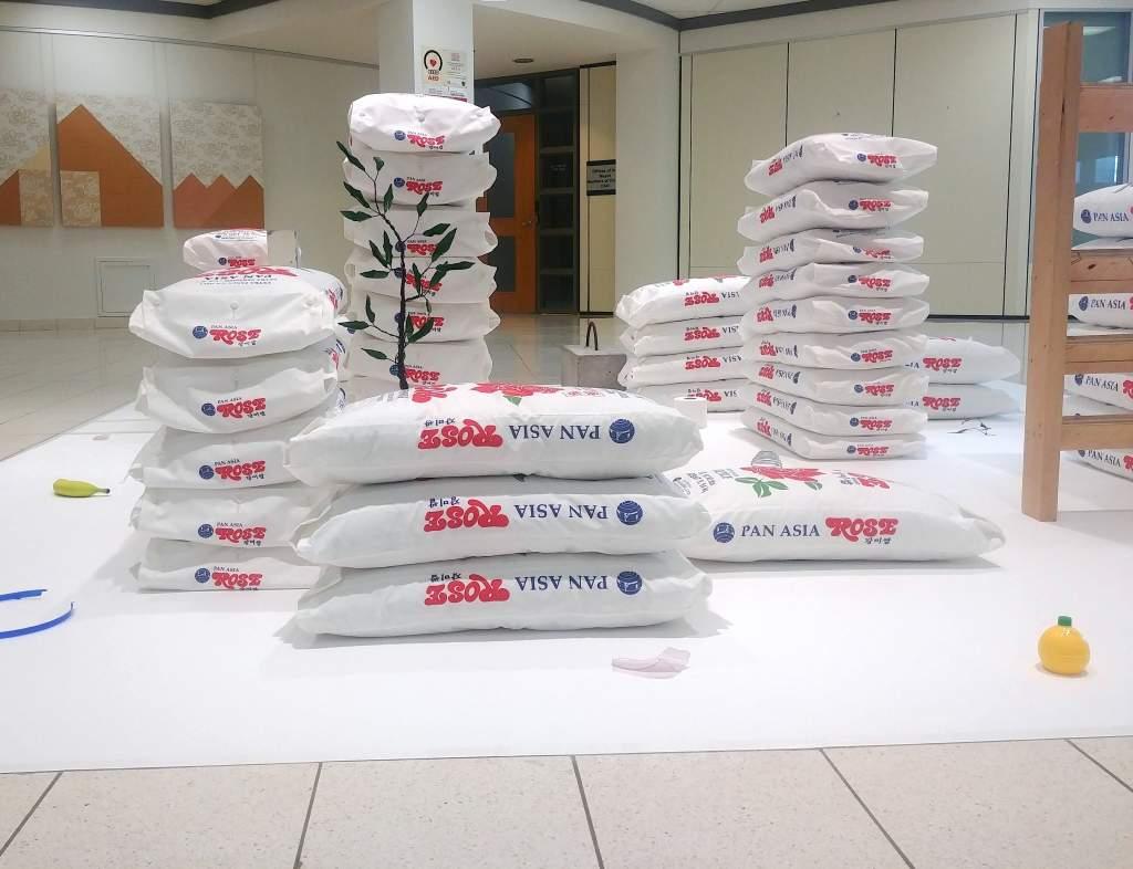 Ricebag Pillowcase Towers in the Park Sangmin Lee